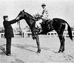 Meridian | Winner of the 37th Kentucky Derby | 1911 | Jockey: G. Archibald | 7-Horse Field | $4,850 prize