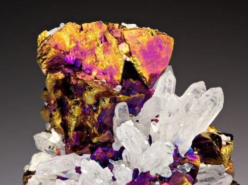 Chalcopyrite with Quartz: Rocks Minerals Fossil Shells, Crystals Minerals Gemstones, Minerals Crystals, Rocks Minerals Gems Fossils, Rocks Minerals Gemstones, Crystal Minerals Gems Quartz, Crystals Rock, Crystals Gems Rocks, Gemstones Rocks Stones