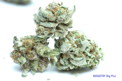 #grape bubblegum #weed #dank