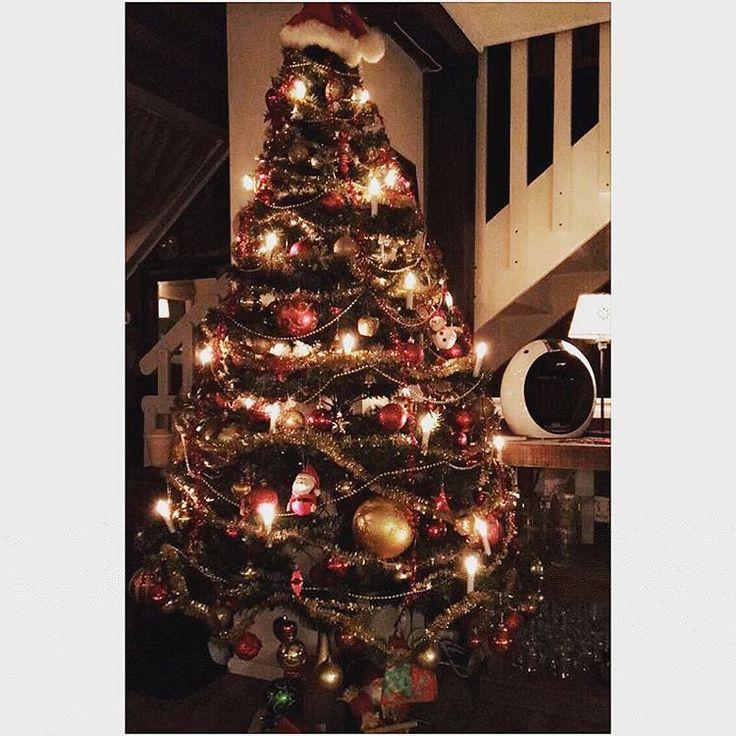 christmas tree christmas tree shop christmas tree decorations christmas tree farm christmas tree ideas christmas tree shop coupon christmas tree - Christmas Tree Shop 20 Coupon