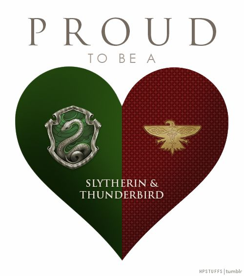 Yasssssssssssssss I'm a slytherin with a great wand (the best one u can get actually) and in thunderbird (51% slytherin 49% ravenclaw)