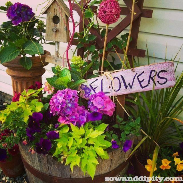 early summer flowers flower garden designgarden design ideasflower gardeningflowers gardencontainer