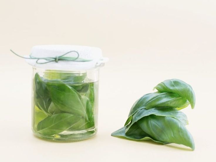 DIY-Anleitung: Basilikumöl gegen Kopf- und Gliederschmerzen herstellen via DaWanda.com