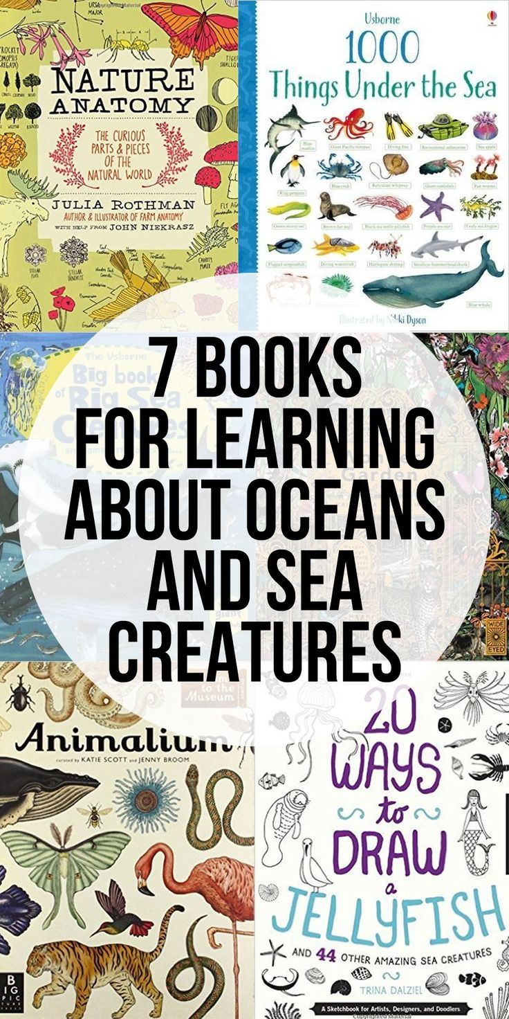 7 Books for Learning About Oceans and Sea Creatures