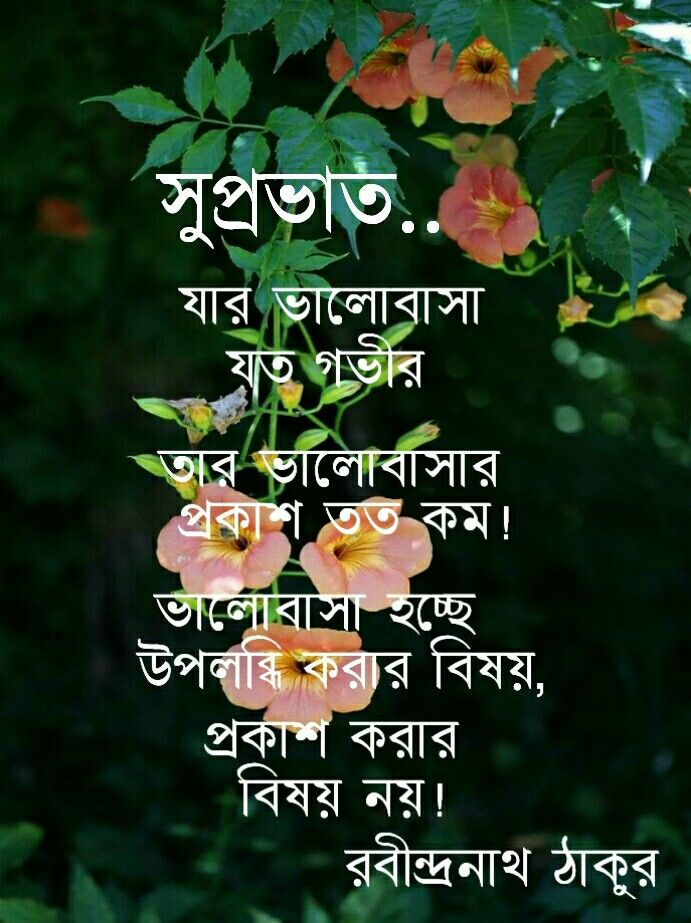 pin by upali guha on quotes love quotes in bengali morning