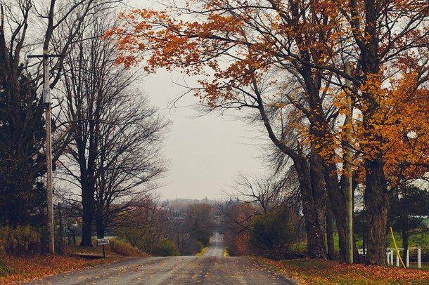 осень, красиво, холодно, сельская местность, мечта