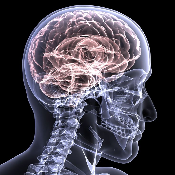 Brain health as much important as physical fitness critical for everyday activities To run a marathon, muscles is always in the fitness agenda, do we heed to brain health as much? It's not that difficult certain incorporating foods, physical and mental health and activity; social engagements are the tips to brain health. http://bit.ly/1Boduqf  Image Source: http://bit.ly/1HjRr7S