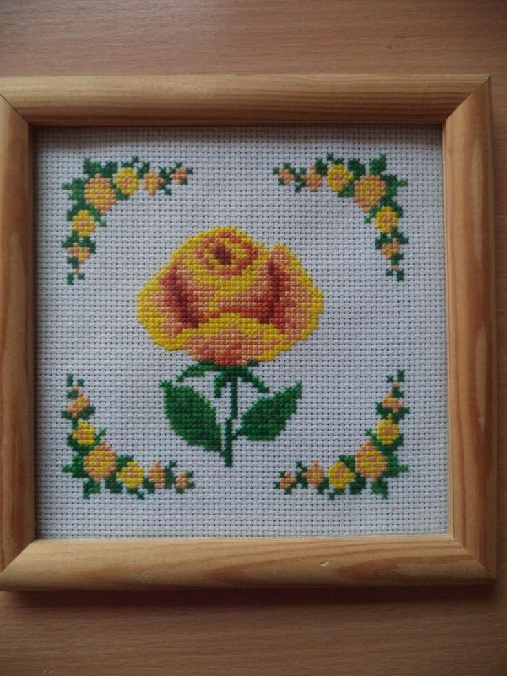 keresztszemes rózsa