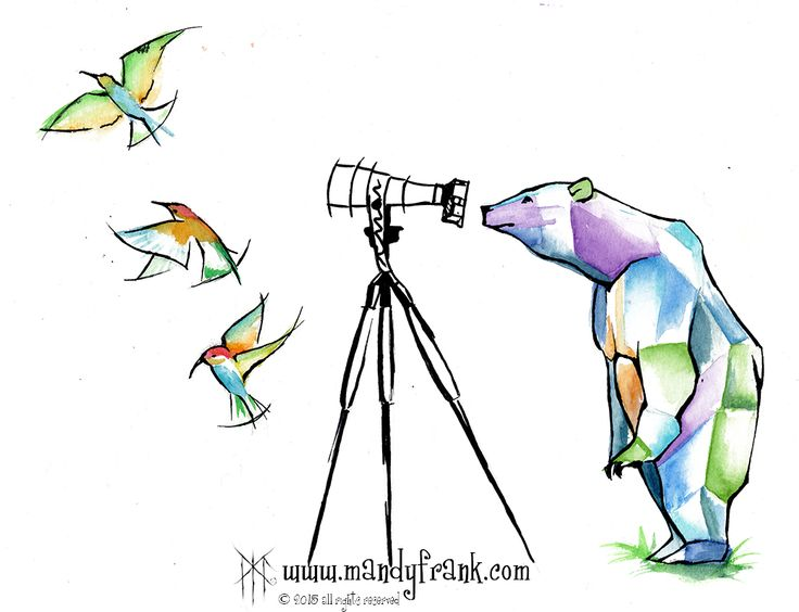 #camerabear #watercolor #artwork #mandyfrank #illustration #hamburg2016