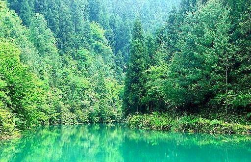 green Yangtze River in summer