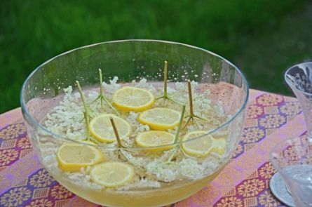 Sparkling White Wine Punch with Elderflowers (Holunderblütenbowle)