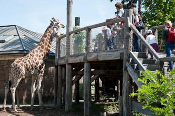 Skip the Line: London Zoo Tickets