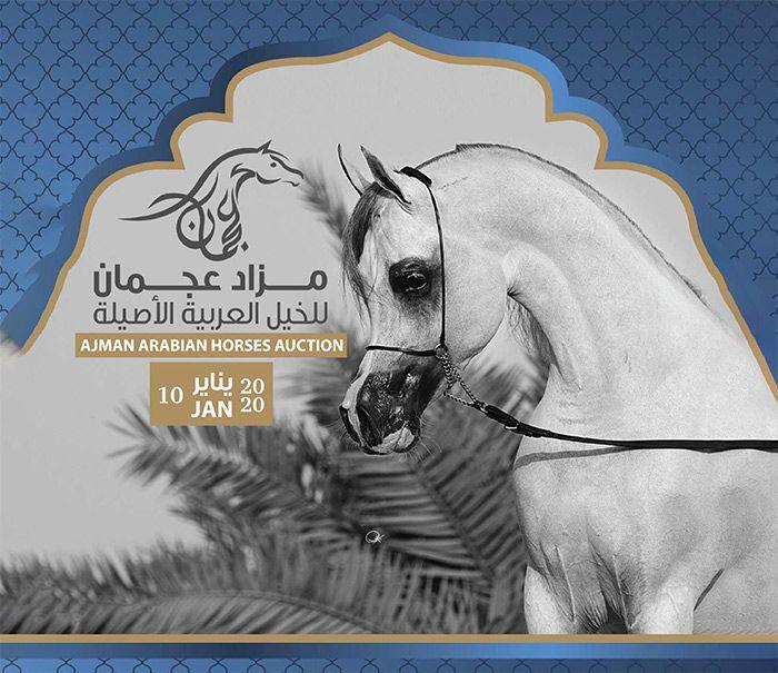 قائمة خيل مزاد عجمان 2020 للخيول العربية Lion Sculpture Arabian Horse Art