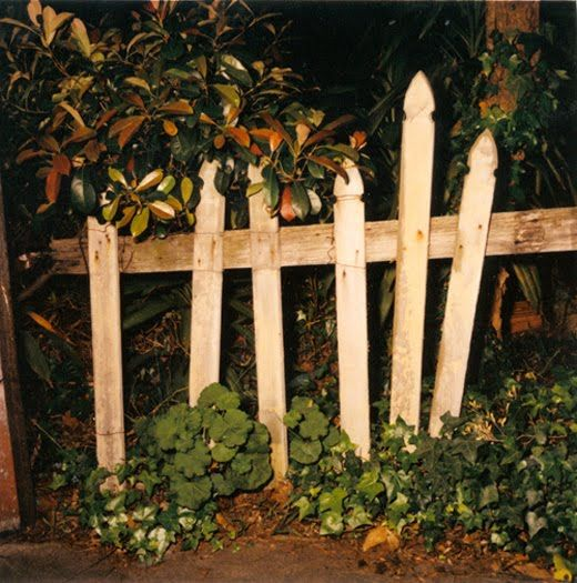 Glenn Sloggett - Picket Fence, from Lost Man, 2003