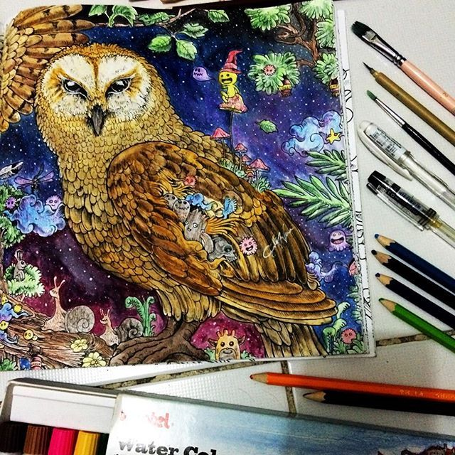 795 Best Animorphia Coloring Book Images