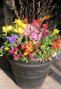 outdoor fall flower pot arrangements | Flower Pot 201 by silvia_straka