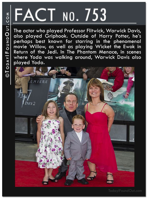 The actor who played Professor Flitwick, Warwick Davis, also played Griphook. Outside of Harry Potter, he's perhaps best known for starring in the phenomenal movie Willow, as well as playing Wicket the Ewok in Return of the Jedi. In The Phantom Menace, in scenes where Yoda was walking around, Warwick Davis also played Yoda.