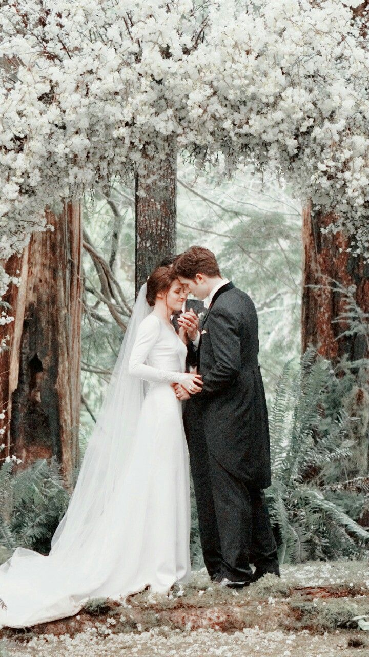 Pin By Dolly Parlewar On Aesthetic Twilight Wedding Breaking Dawn Wedding Twilight Wedding Dresses