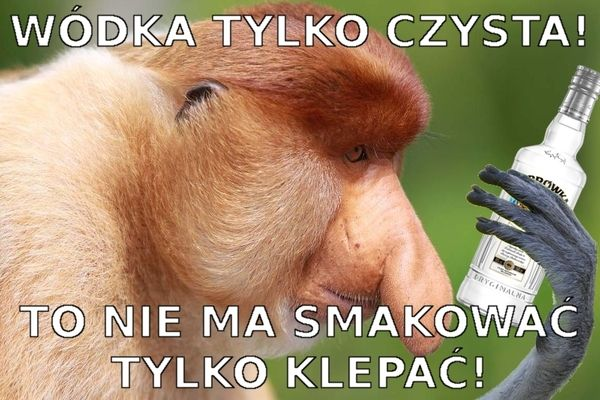 30 memów o Polakach. Czyli zachowania i teksty, z którymi spotkał się pewnie każdy z nas – Demotywatory.pl