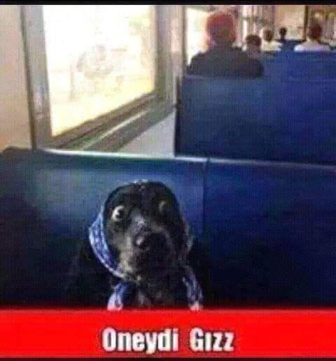 Oneydi Gızz #mizah #matrak #espri #komik #şaka #gırgır #sözler #güzelsözler #komiksözler #caps