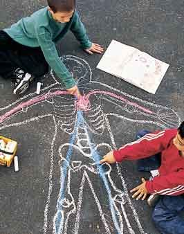 Another body lesson but with sidewalk chalk. I love this idea too!