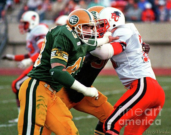 Game action photograph of Edmonton Eskimos linebacker Craig Shaffer #43 rushing the passer in a game against the B.C. Lions, 1987.