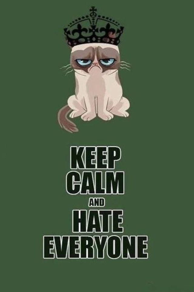 Love me some Grumpy Cat! <3