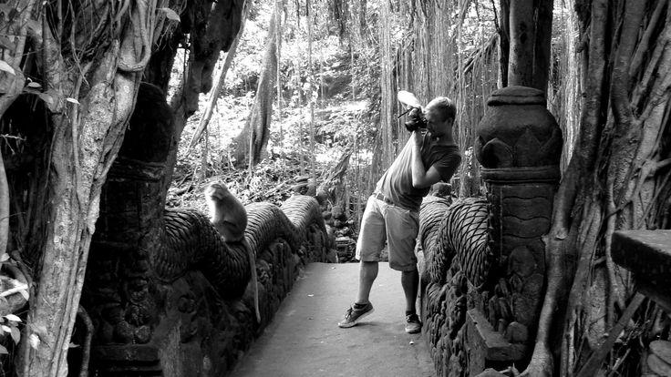Monkey Temple. Ubud. B.