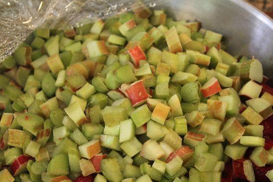 6 great rhubarb ideas from mrs wheelbarrow