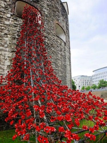 Poppies Pour Like Blood from the Tower of London - This summer, the Tower Of London will be surrounded by a sea of crimson. This installation, conceived by artist Paul Cummins and designer Tom Piper, will commemorate each and every British and Colonial fatality from World War 1 by planting 888,246 red ceramic poppies in a flowing sea around the tower's dry moat.