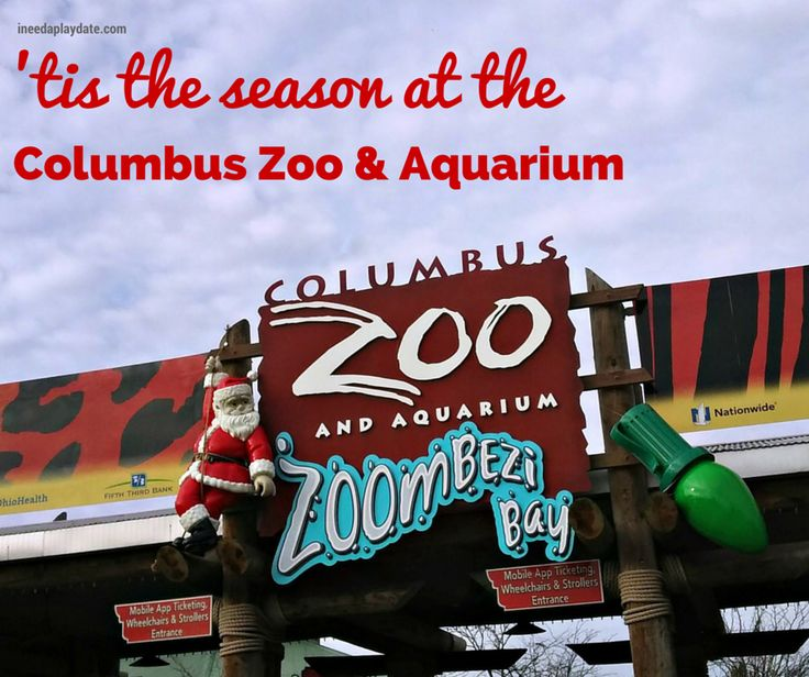 25 Unique Columbus Zoo Ideas On Pinterest Dublin Ohio