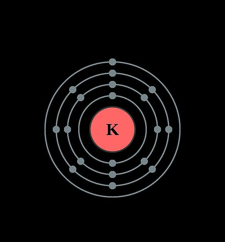This diagram shows the electron shell configuration of a potassium atom.