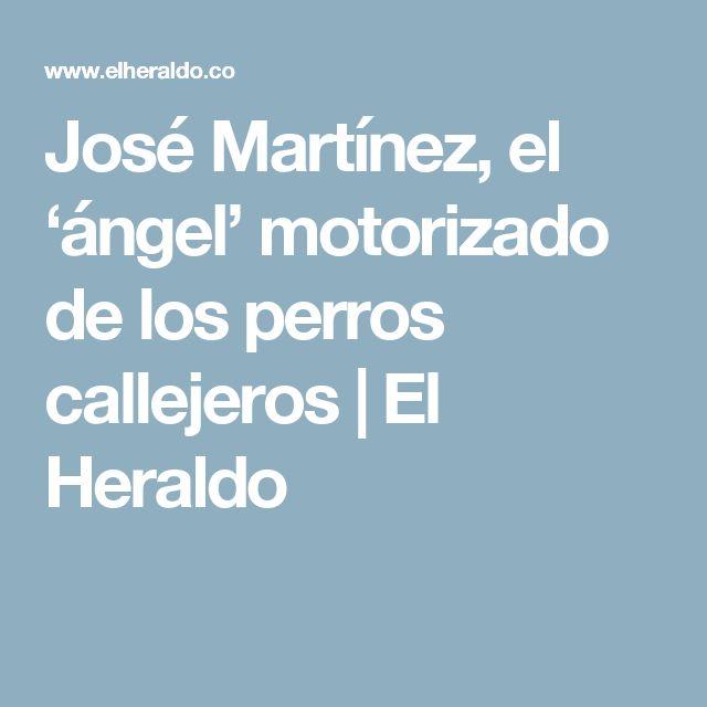 José Martínez, el 'ángel' motorizado de los perros callejeros | El Heraldo
