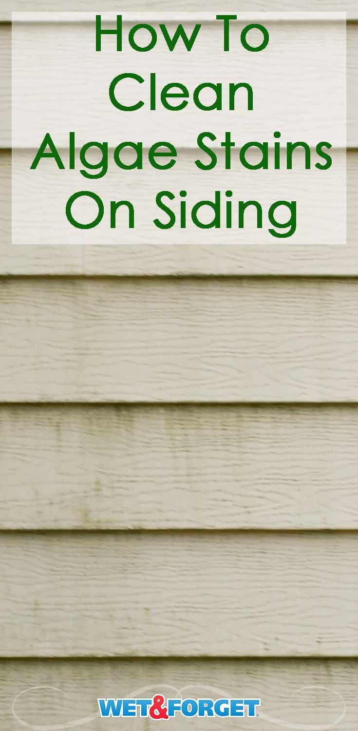 4 Reasons Wet Forget Outdoor Is The Perfect Vinyl Siding Cleaner Cleaning Vinyl Siding Vinyl Siding Siding Wash