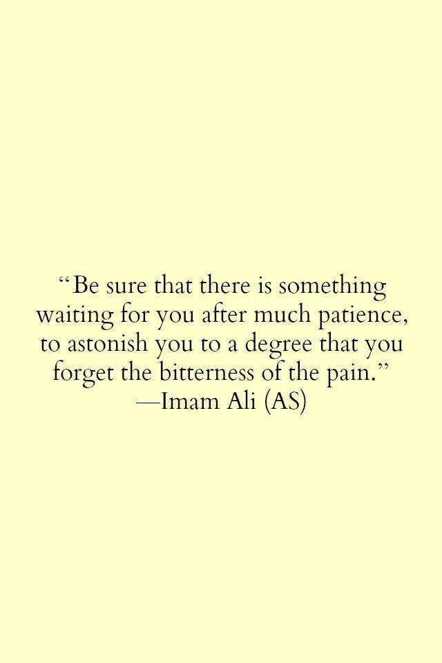 Be sure that there is something waiting for you after much patience, to astonish you to to a degree that you forget the bitterness of the pain {Imam Ali (a.s.)}