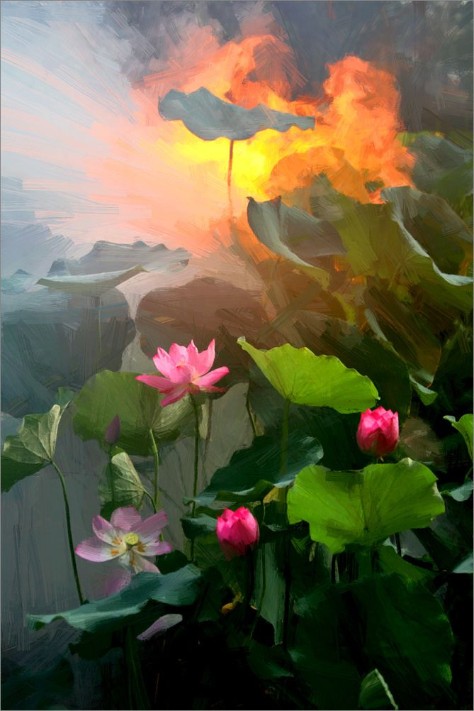 Lotus Flower Paintings - Image Based - Akvis Oil Paint Filter - akvis.com/en/oilpaint/index.php