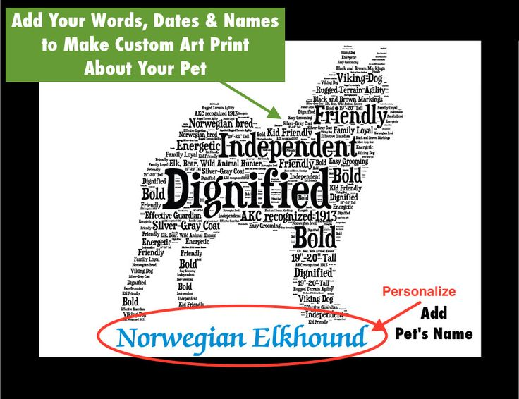 Traits of the Norwegian Elkhound If you are a pet parent or are shopping for a dog lover, our pet portrait wall art makes an ideal addition to a dog lover's home's décor. This listing is for a Norwegi