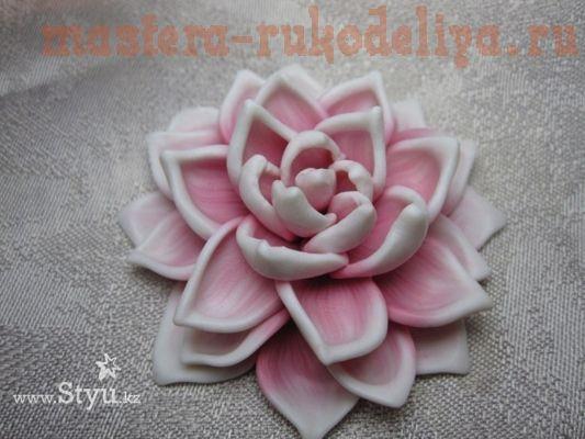 Lotus flower picture tutorial