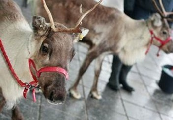 At this festive event at Urban Exchange Manchester children will get to meet both Santa, his Reindeer and also get to sit in his magical sleigh, the perfect start to the festive season!
