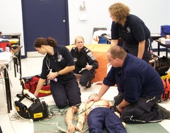 Is There A Role For Paramedics In Primary Care In Ireland ...