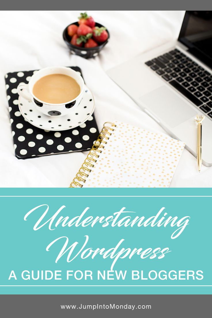 Understanding Wordpress: A Guide For New Bloggers. Learn about Wordpress, domain names, web hosting, themes, and plugins so you can start your new blog!