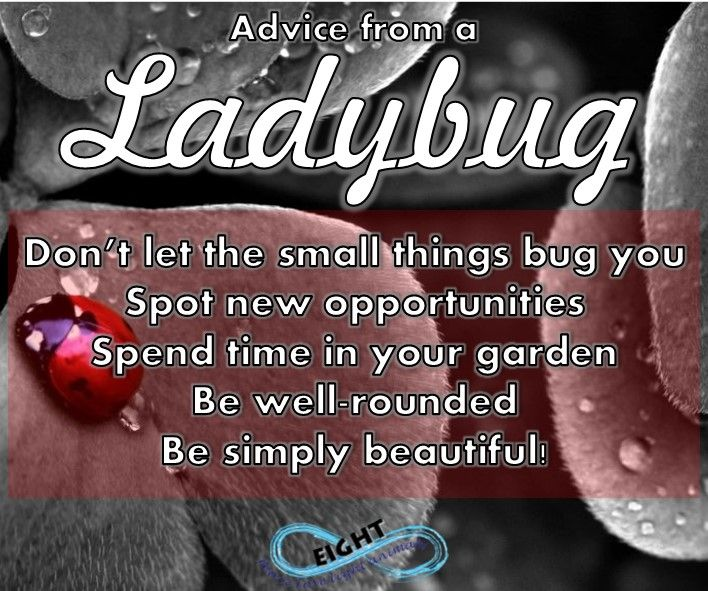 The ladybug is a symbol of lady luck and brings luck and abundance wherever she goes. When you see a ladybug. make your wish known to her, and when you see her fly away you will know she is off to grant your wish...