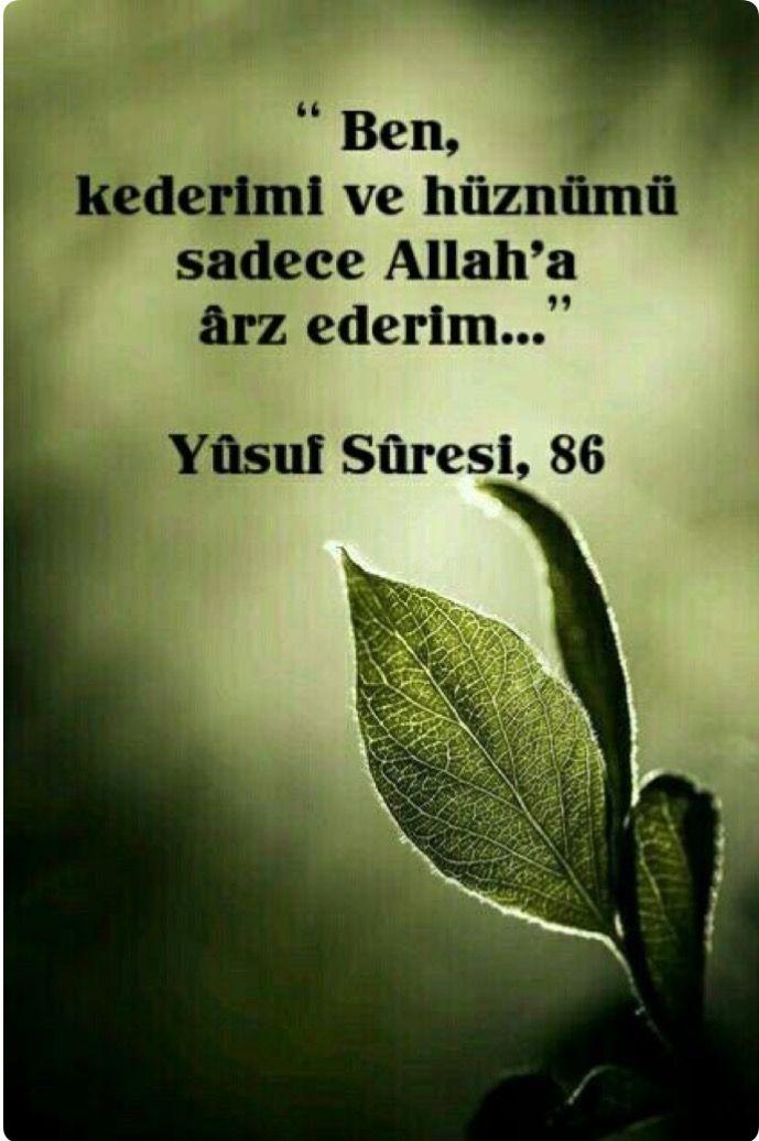 Yusuf/86
