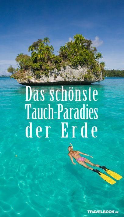 Die Inseln von Palau im pazifischen Ozean zählen zu den wahrscheinlich schönsten Tauchgründen der Welt. Eine Schnorchel-Ausrüstung reicht, um in der ehemaligen deutschen Kolonie Raubfische aller Größen zu erleben.