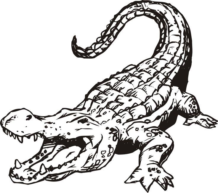 Vintage Gator Coloring Pages 33 Free Printable Alligator Coloring