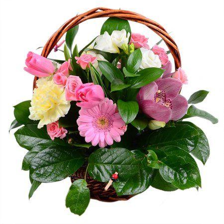 Сюрприз для второй половинки http://flora2000.ru/p/surpriz_dlya_vtoroy_polovinki