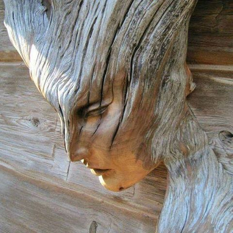#woodwork #wooden #wooddesign #wood #woodworking #carving #doors #Barrels #reclaimedwood #handmade #carpentry #joinery #combjoint #fingerjoint #plane #joint #handmade #wood #timber #carpenter #craftsman #handtools #woodturning #woodworker #diy #woodshop #woodhouse #powertools #woodlovers #popularwoodworking #woodcut