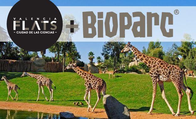 Alquiler de apartamentos vacacionales para 1 o 2 noches + una entrada por adulto o niño (menor de 12 años) al Bioparc