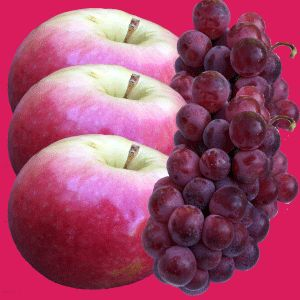Botanical Extracts Grape Seed Extract, Grape Skin Extract, Apple Peel Skin
