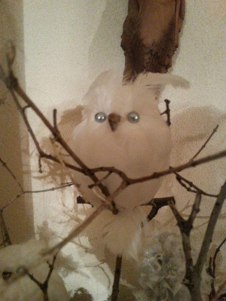 snežná sova z peria